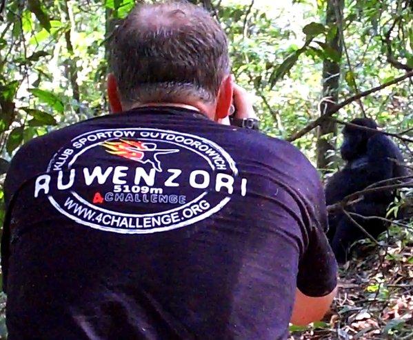 Członek ekipy 4challenge robi zdjęcie gorylom na Ruwenzor - zdjęcie z bloga podróżniczego 4challenge
