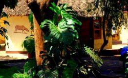 Keys hotel w Moshi - Uru