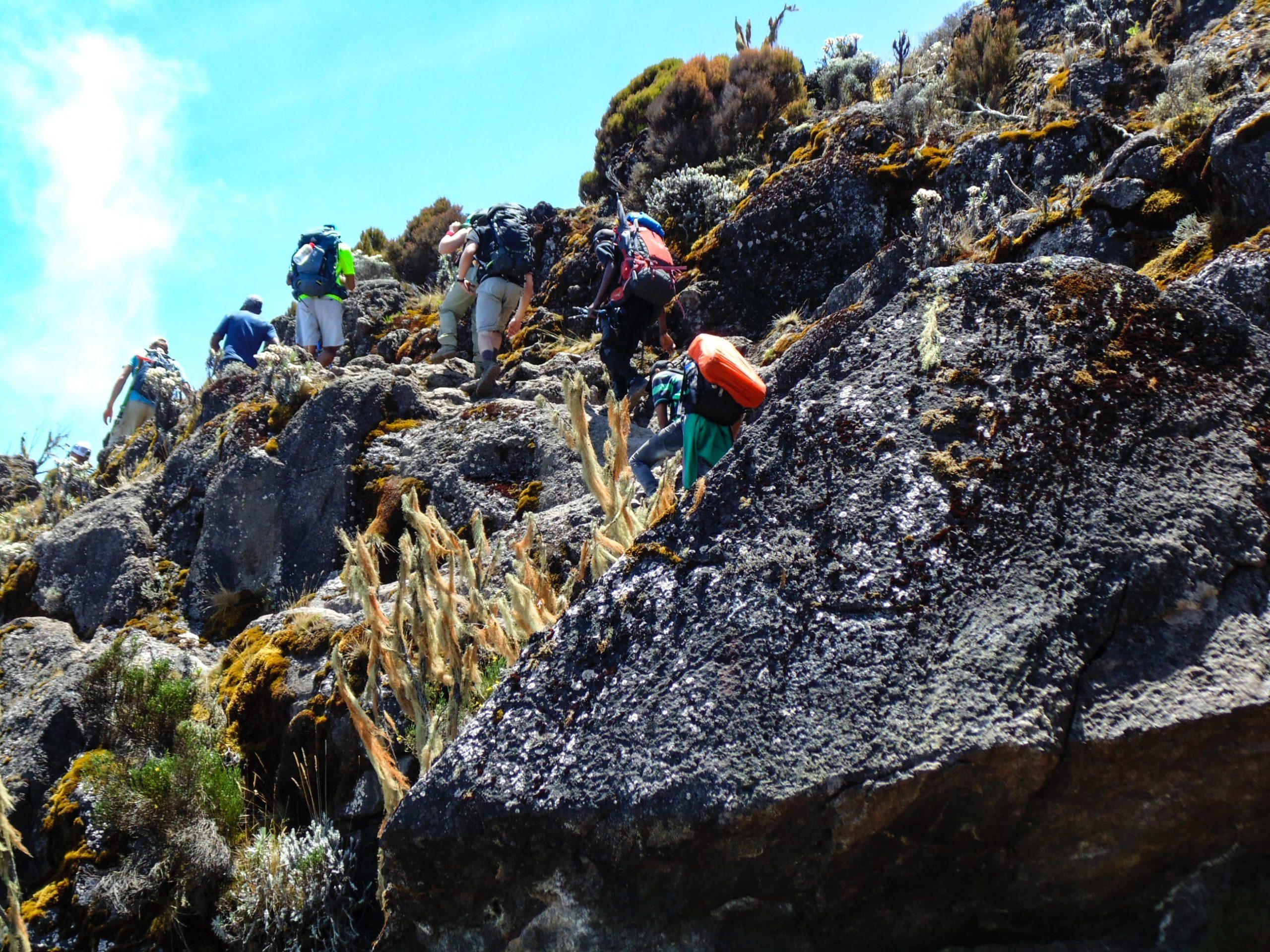 Lekka wspinaczka, trekking, machame route, kili.-min